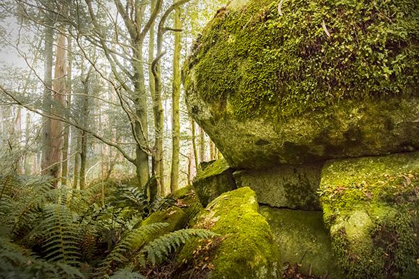 mushroom-rocks
